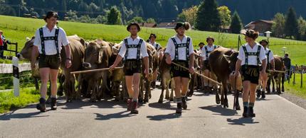 Ferienwohnung Viehscheid